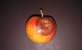 Ένα μήλο τήν ημέρα τόν γιατρό τόν κάνει πέρα;;; ή τόν φέρνει στήν ζωή σου;