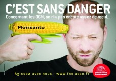 GMO_Corn_Monsanto